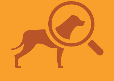 Magnifying glass and dog icon