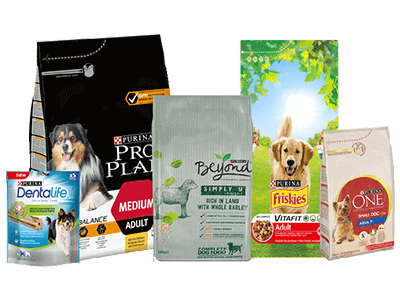 Dogs Products